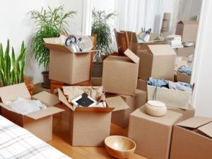 request your Sydney removalists quote now