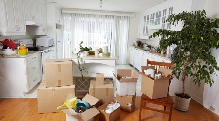 stress-free-moving